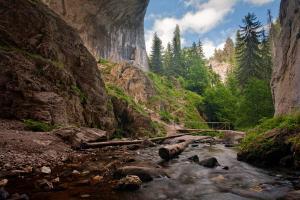 Красива снимка от Родопите